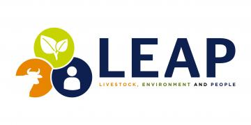 leap primary logo