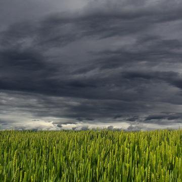 clouds 194840